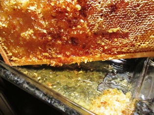 Golden honey draining from a frameinto a glass dish