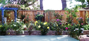 The garden trellis is painted with the French words for