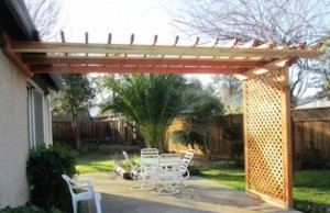 The completed trellis for the wisteria awaits a fountain and hanging plants