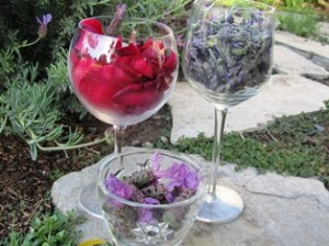 Rose petals, Spanish lavender, and French perfume lavender can all be used to make a flower essence