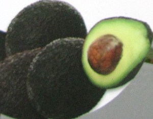 Leathery skin, large seed, and creamy fruit characterizes a ripe avocado