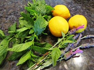 Mint, lavender, and other herbs can be used in teas and tinctures for healing