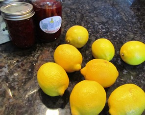 The acid of lemon juice helps preserve the color of fruit before drying