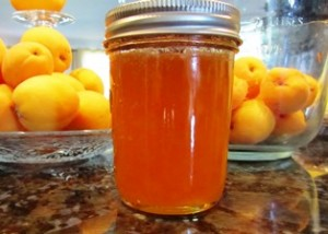 Apricots lmake great-tasting jams, jellies, and leathers