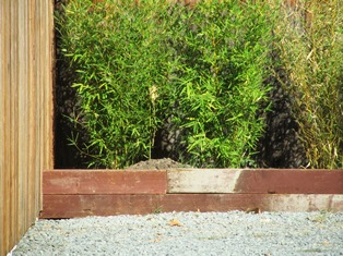 planter boxes on both ends of the fence protect the bamboo and hold water