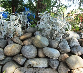 The round shape of river rock forms the basis of a water basin, flower/herb bed around the base of a tree
