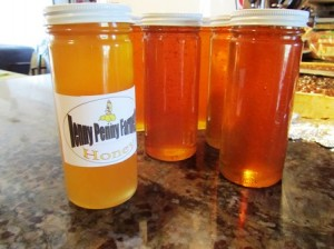 A single frame produced eight 16-ounce jars of honey