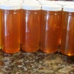 Finished jars reveal clear, light amber honey the bees made from springtime flowers