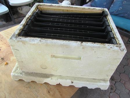 black plastic feeder unit inserts fit directly into a hive like frames
