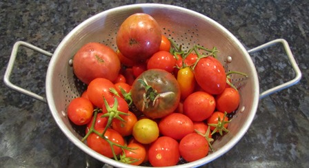 heirloom tomatoes taste great