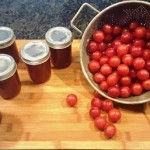 I made a test batch of the wild plum jam to make sure it tasted great before canning a lot of jars