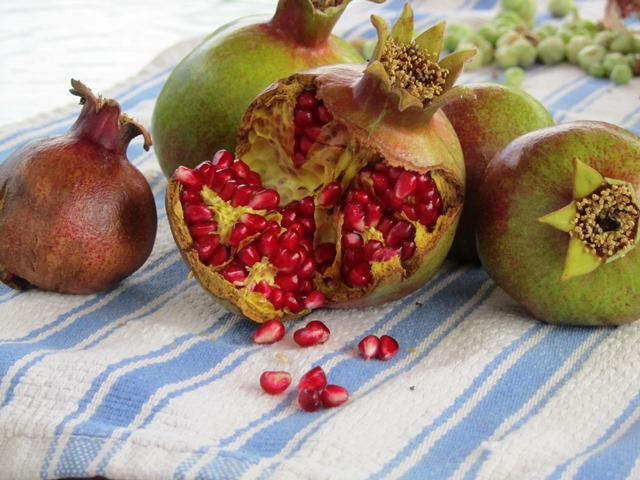 pomegranate seeds  lg web