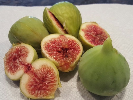 ripe figs sm web