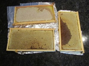 Springtime honey appears golden whereas autumn honey is often darker (depending on what's flowering)