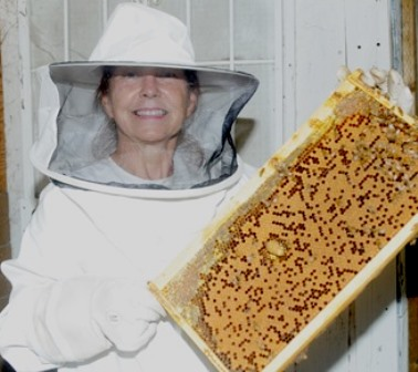 The frame I'm holding contains a queen house, honey, and brood