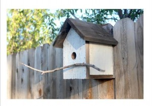 This DIY birdhouse is crafted from a repurposed fence board. Not all birds will take up residence in a house, but many will.