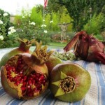 Store onions in burlap bags; pomegranates